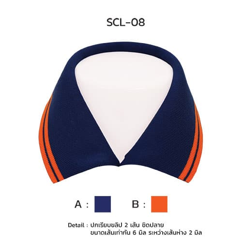 scl-08-1