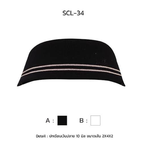 scl-34-3